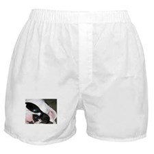 White Boxer Boxer Shorts