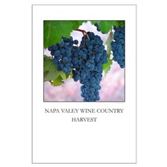 napa valley wine country, harvest - posters