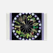Celtic Calendar of Trees Magnets