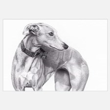 Cute Galgo Wall Art