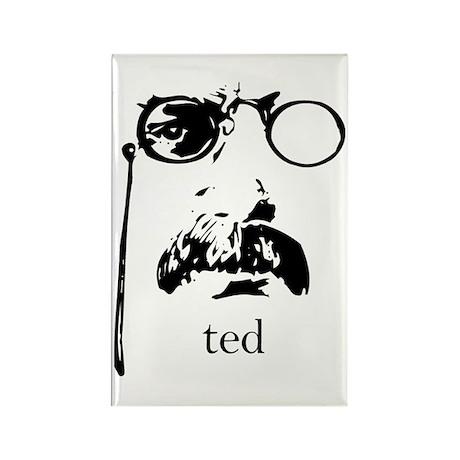 Teddy Roosevelt Rectangle Magnet (10 pack)