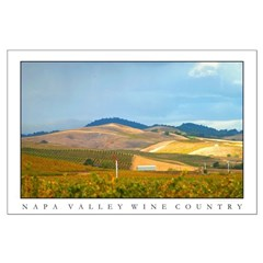 sunlit wine country vineyards + foothills posters