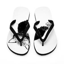 Cat dos x Flip Flops