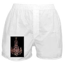 leopard print chandelier Boxer Shorts