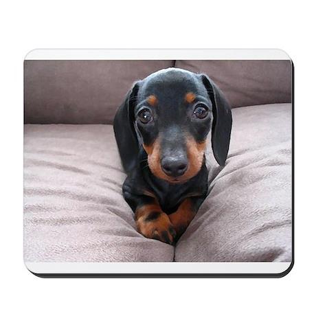 """Adorable Puppies"" Mousepad"