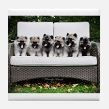 Cute Keeshond Tile Coaster