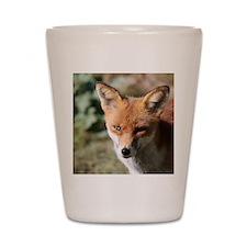 Fox001 Shot Glass