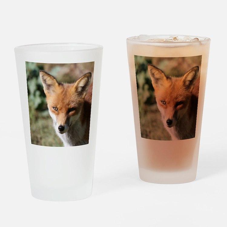 Fox001 Drinking Glass