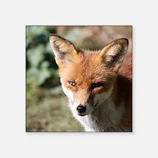 """Fox001 Square Sticker 3"""" x 3"""""""
