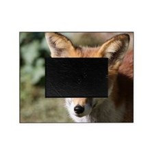 Fox001 Picture Frame
