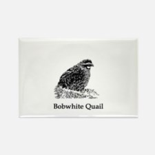 Bobwhite Quail (line art) Magnets