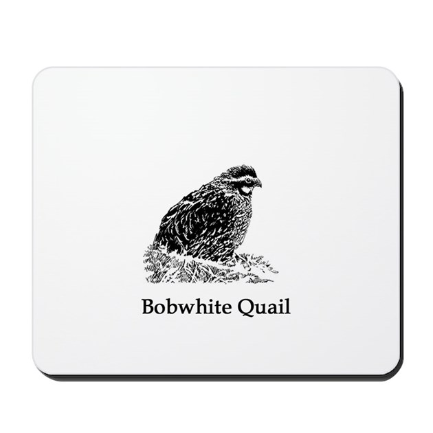Quail Line Art : Bobwhite quail line art mousepad by outdoorsusa