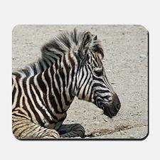 Zebra004 Mousepad