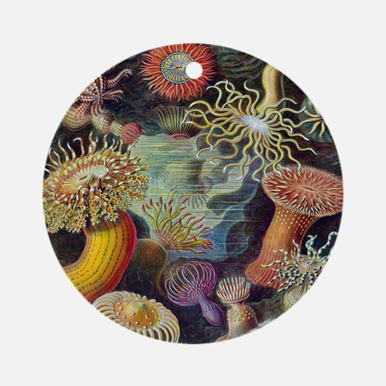 Vintage Sea Anemones Round Ornament