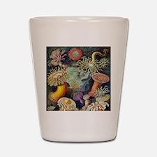 Vintage Sea Anemones Shot Glass