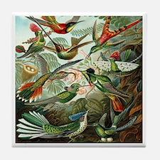 Vintage Hummingbirds Tile Coaster