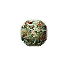 Vintage Hummingbirds Mini Button