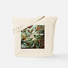 Vintage Hummingbirds Tote Bag