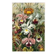 Vintage Orchids Postcards (Package of 8)