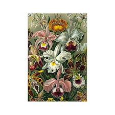 Vintage Orchids Rectangle Magnet