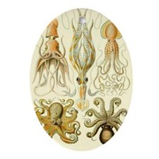 Vintage Octopus, Octopi Oval Ornament