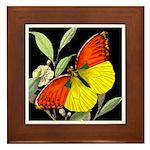 THE BUTTERFLY Framed Tile