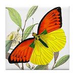 WILD ORANGE BUTTERFLY Tile Coaster