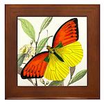 WILD ORANGE BUTTERFLY Framed Tile