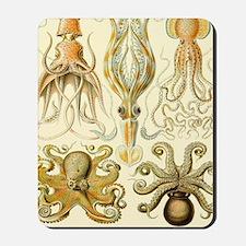 Vintage Octopus, Octopi Mousepad
