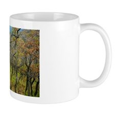 Mug: Twisted Oaks
