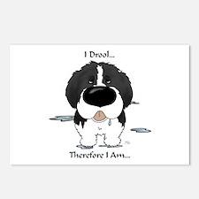 Newfie (Landseer) - I Drool Postcards (Package of