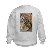 Cute Kids tiger Sweatshirt