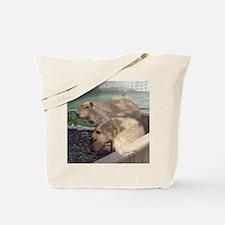 capybaras Tote Bag