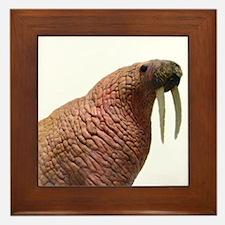 walrus Framed Tile