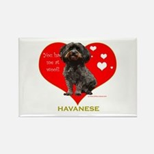 Havanese Valentine Woof Ebony Rectangle Magnet