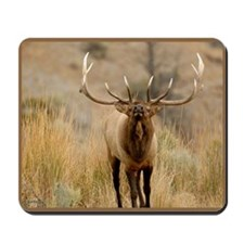 Mammoth Bull Elk  Mousepad