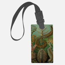 Vintage Segmented Worms, Chaetop Luggage Tag