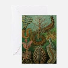 Vintage Segmented Worms, Chaetopoda Greeting Card