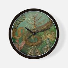 Vintage Segmented Worms, Chaetopoda Wall Clock