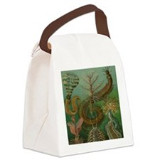 Vintage Segmented Worms, Chaetopo Canvas Lunch Bag