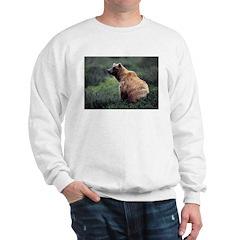 Alaska Grizzly Bear Ash Grey Sweatshirt