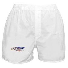 US Flag: American Eagles Boxer Shorts
