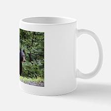 Smoky Mountain Black Bear Mug