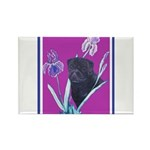 Black Chinese Pug Rectangle Magnet (100 pack)