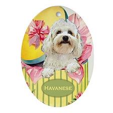 Havanese Spring Easter Keepsake Oval Ornament