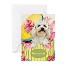 Havanese Thank You Greeting Cards (Pk of 10)