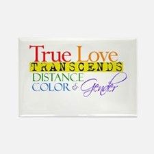 Cool Glbt valentines day Rectangle Magnet