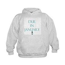 Due in January Hoodie