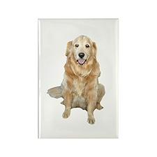 Golden Retreiver Dog Rectangle Magnet