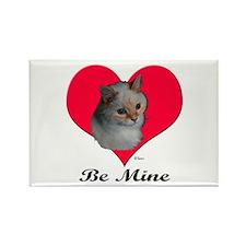 Kekoe the cat's Valentine Rectangle Magnet